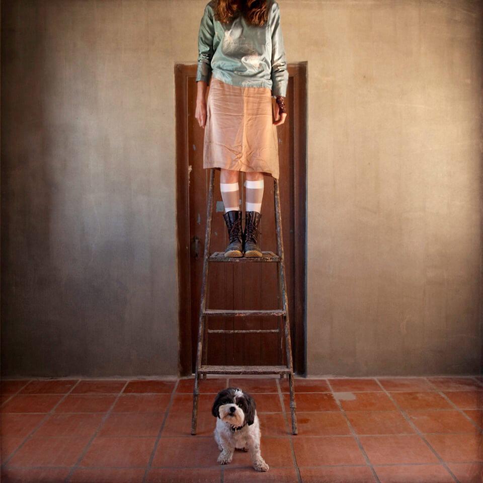 Eine Frau steht auf einer Leiter, ein Hündchen sitzt darunter.