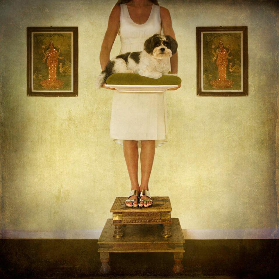 Eine Frau hält einen Hund auf einem Tablett und steht auf zwei kleinen Bänken.