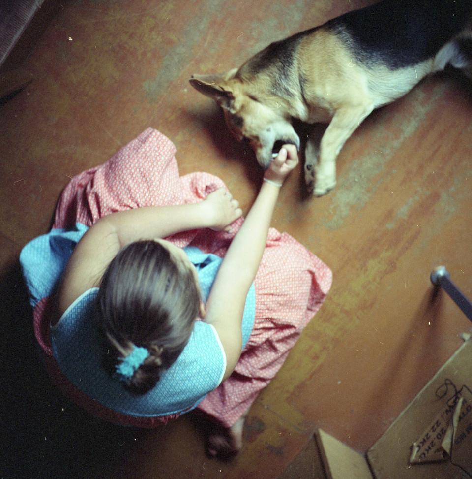 Ein Mädchen spielt mit einem Ball mit einem kleinen Hund.