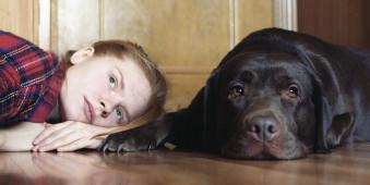 Ein Mädchen und ein Labrador liegen auf dem Boden.