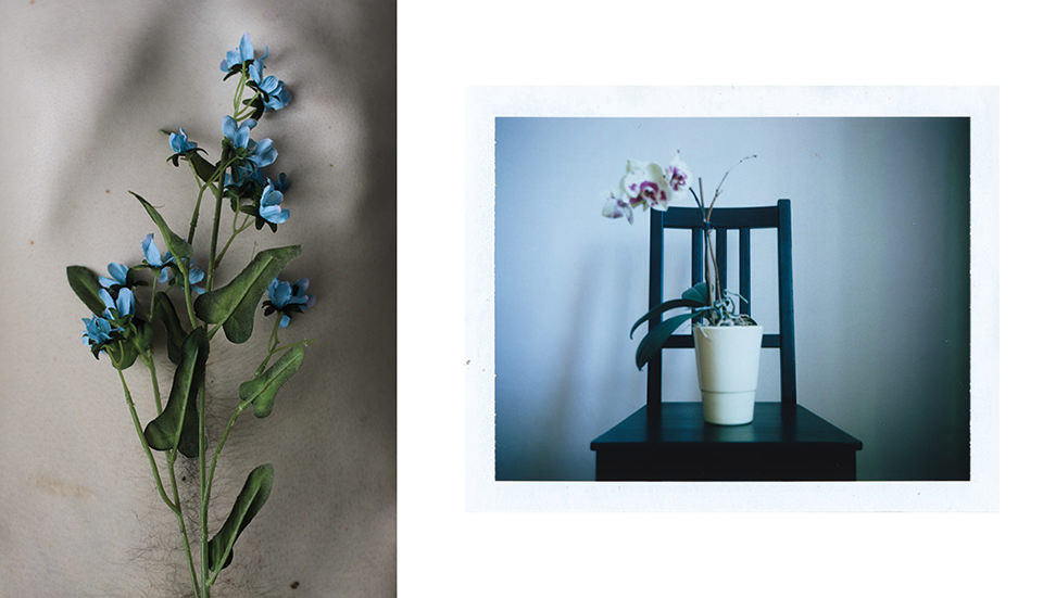 Blumen, Haut