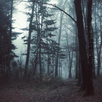 © Darkwrin