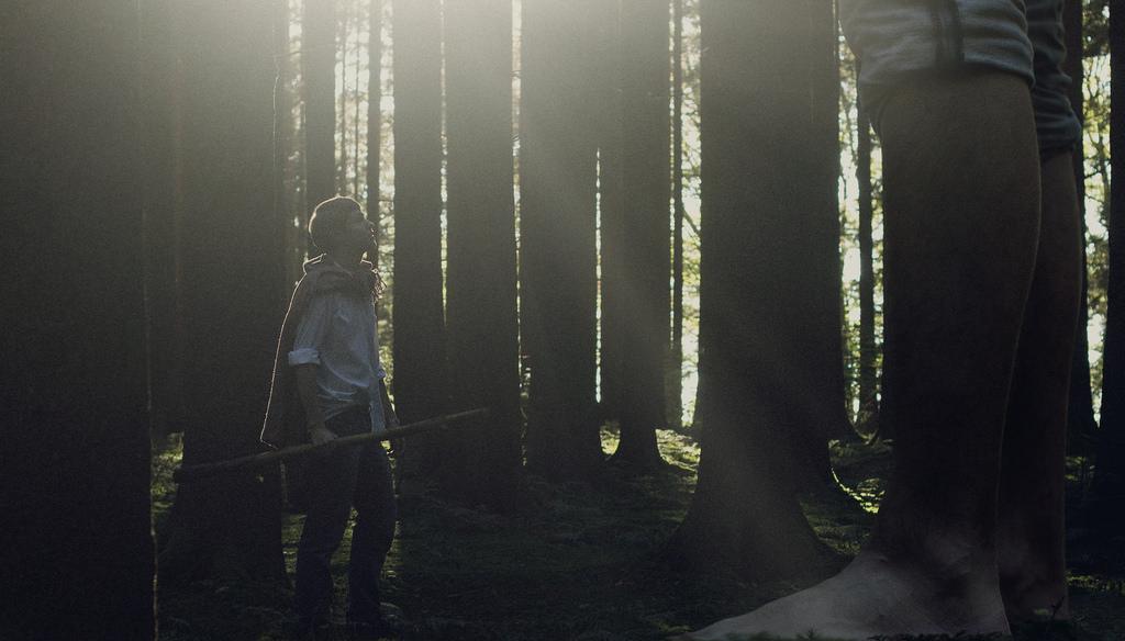 Ein Riese im Wald