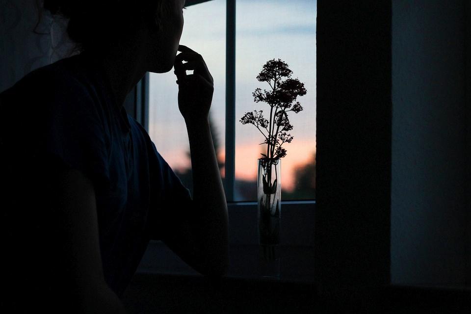 Silhouette einer Frau mit Blumen in einer Vase vor einem Fenster.