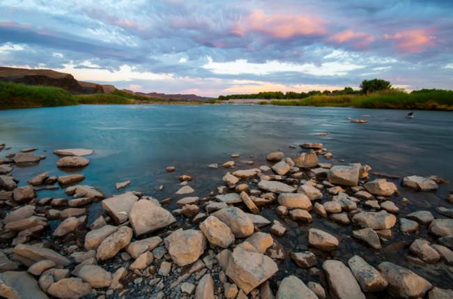 Ein Flussufer voller Steine
