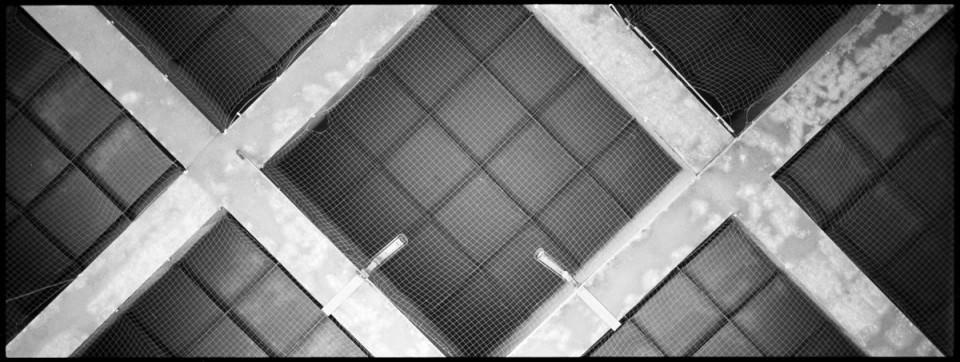 Dachkonstruktion mit Netz.