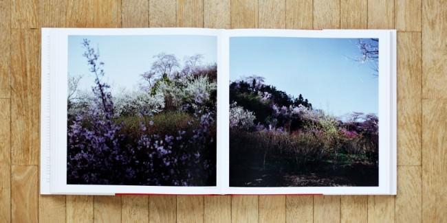 """Das Buch """"Fullmoon"""" von Darren Almond, Verlag aufgeschlagen"""
