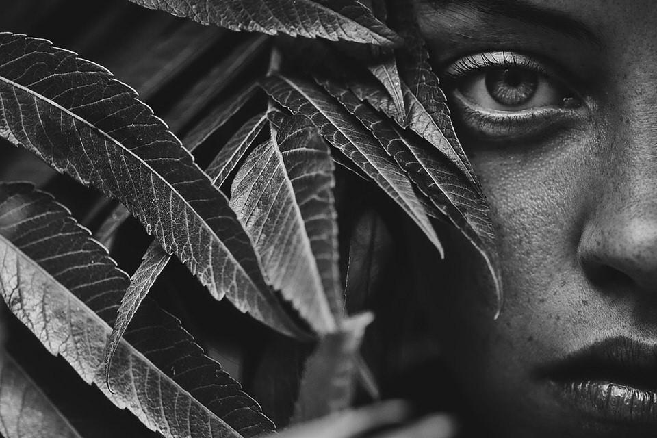 © Tim Cavadini