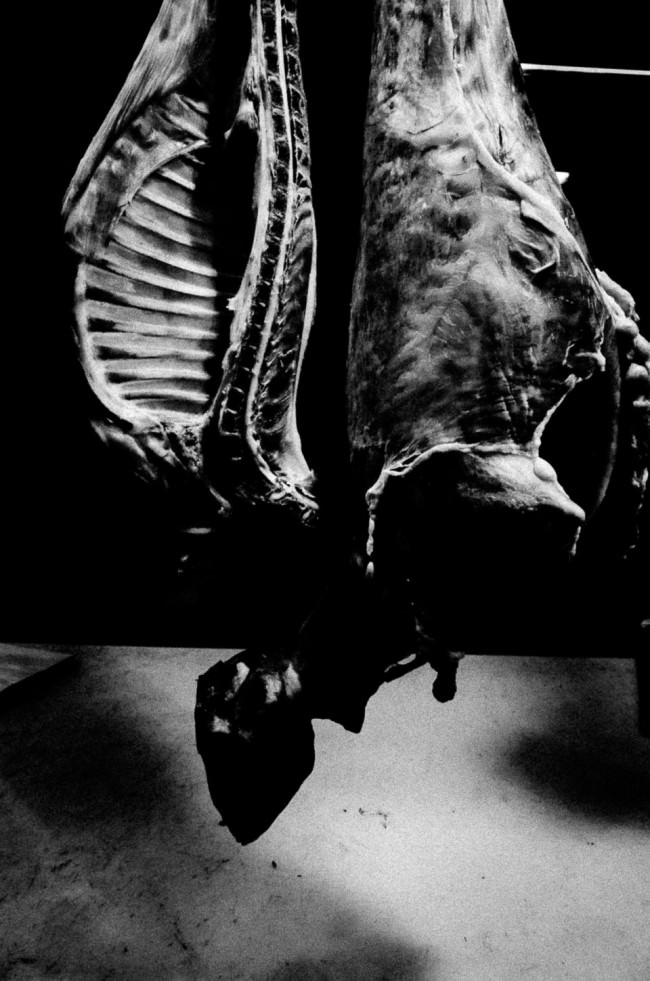hängende tote Körper