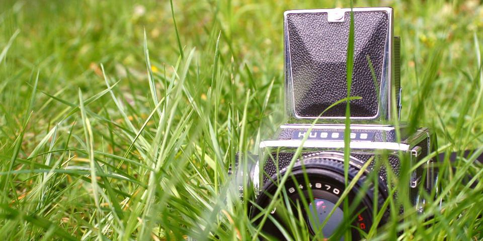 Mittelformatkamera Kiev 88 halbversteckt in grünem Gras.