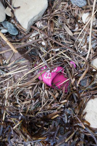 Ein rosa Schuh im Morast