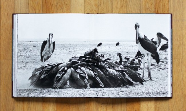 "Doppelseite in ""The End of the Game"" von Peter Beard"