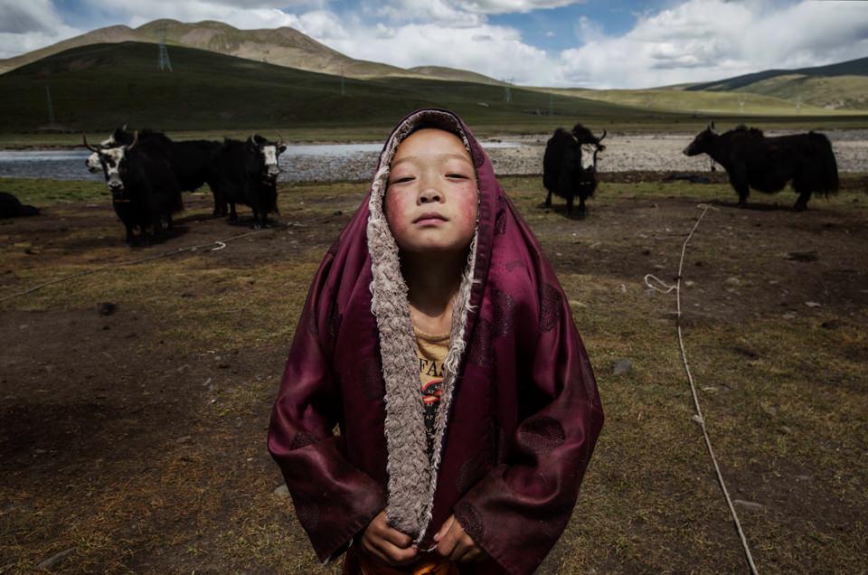 Ein Kind steht vor Tieren in der Steppe