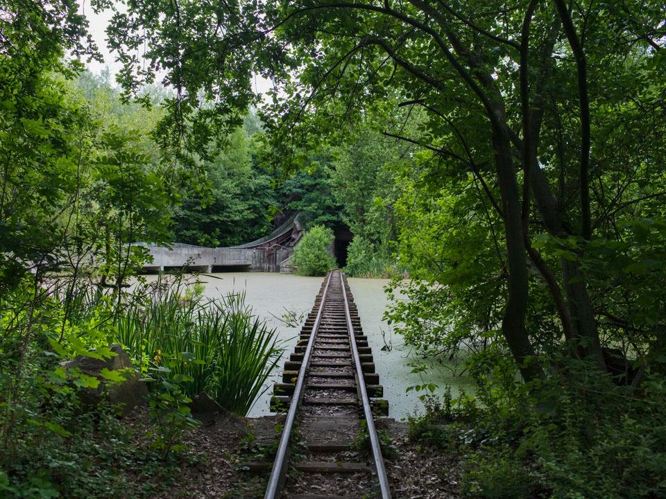 Ein zugewachsener Eisenbahntunnel
