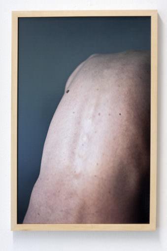 Ein nackter Rücken mit sichtbarer Anatomie.