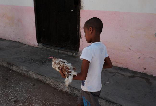 Ein Junge trägt ein Huhn auf einer Straße entlang.