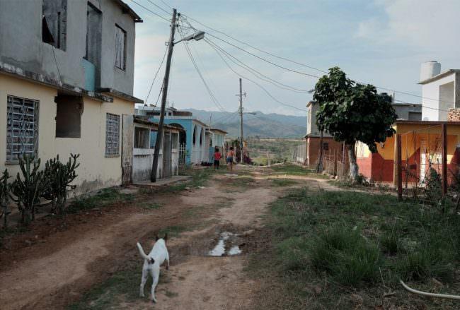 Blick eine kubanische, ländliche Straße hinunter, die ein Hund entlangspringt.