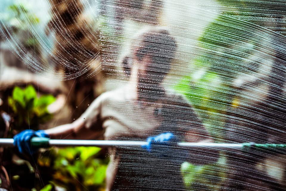 Eine Person putzt eine Scheibe