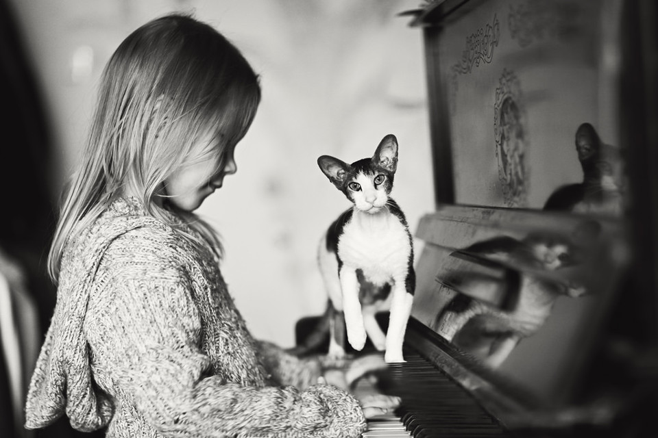 Schwarzweißfoto eines Mädchens am Klavier, über das eine Katze läuft.