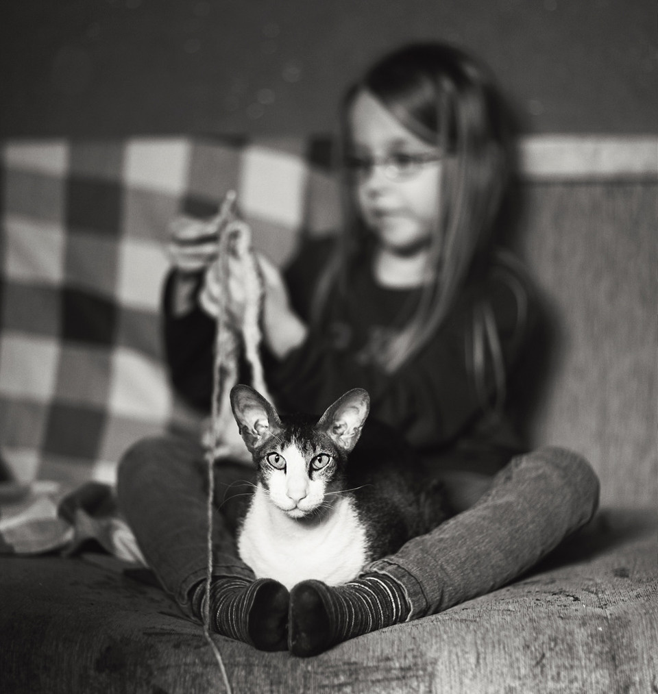 Schwarzweißfoto eines Mädchens beim Stricken, mit einer Katze auf dem Schoß.