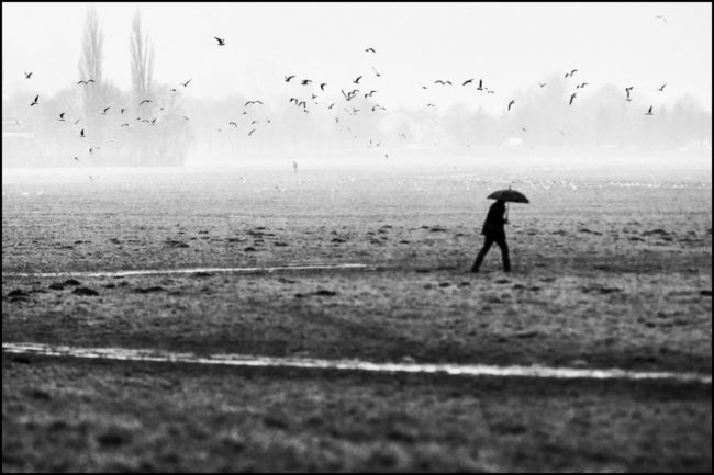 Schwarzweißaufnahme eines Person, die über ein Feld läuft über dem Krähen fliegen.