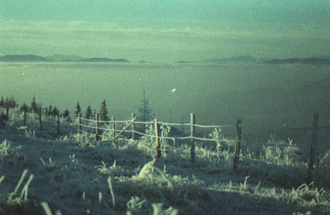 Eine Winterlandschaft, ein See und ein Wanderweg.