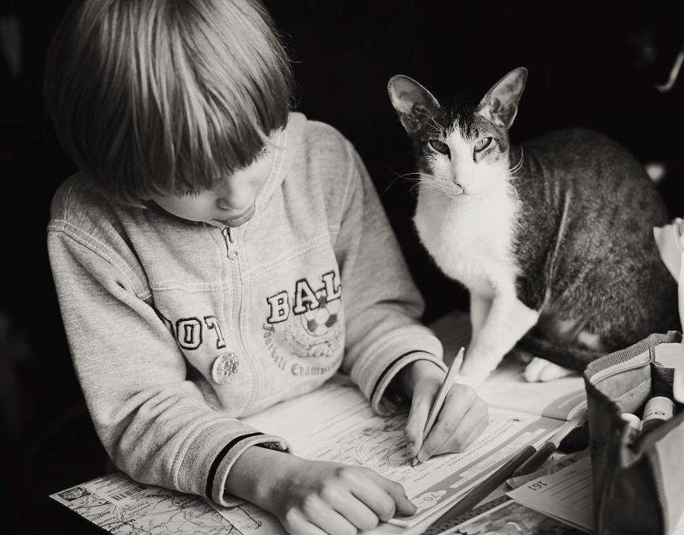 Schwarzweißfoto eines Jungen beim Schreiben mit einer Katze auf dem Heft.