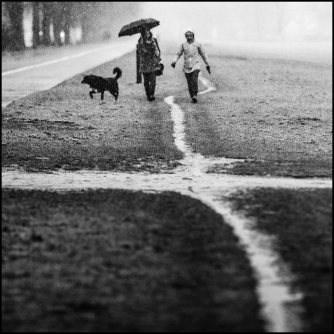 Schwarzweißaufnahme spazierender Mensche, die über einen sich kreuzenden Weg laufen.