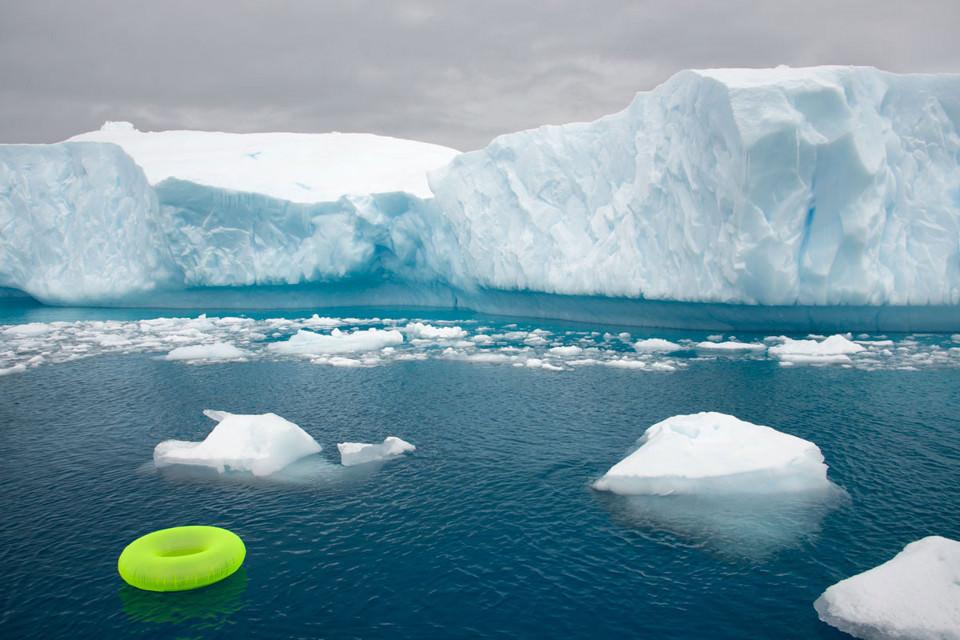Ein grüner Badereif treibt vor einem Eisberg im Meer.