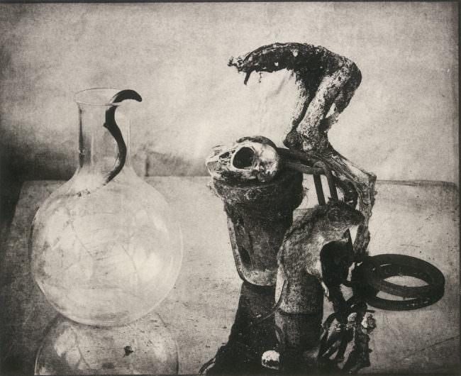Morbide Stillleben