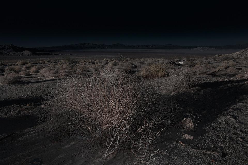 Eine ausgeleuchtete Wüstenlandschaft mit Gestrüpp.