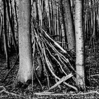 © Matthias Koch