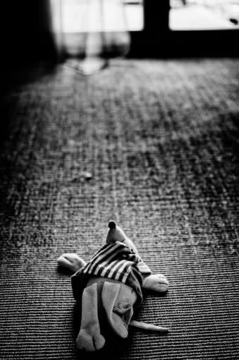 Ein Kuscheltier auf dem Boden.