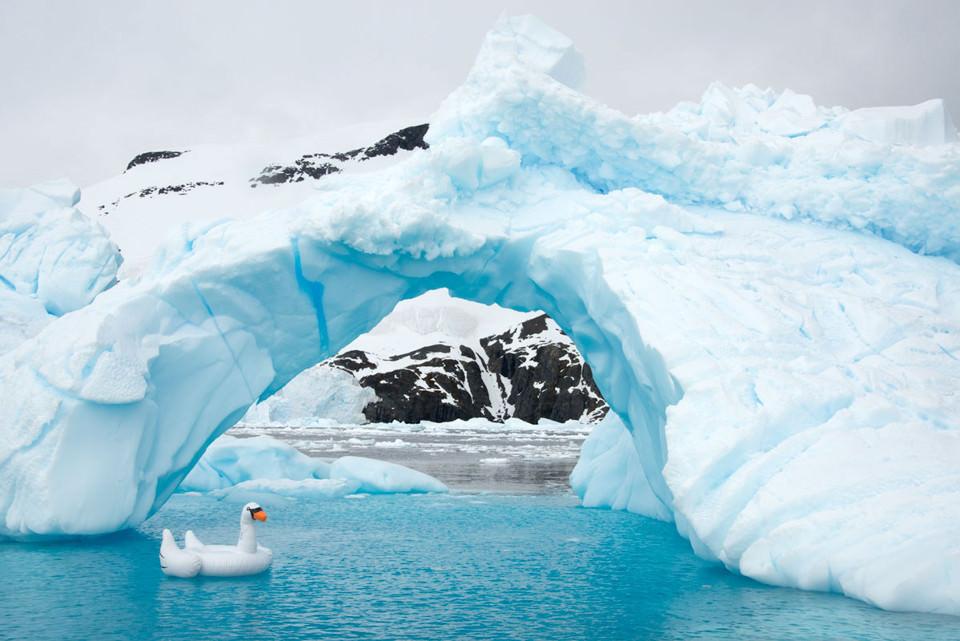 Ein Plastikschwan treibt unter einer Eisbrücke her.