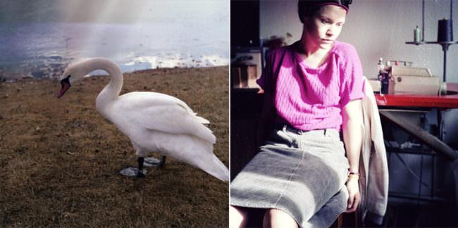 Ein Schwan ist auf dem linken Foto, auf dem rechten Bild sitzt eine Fau ruhig auf einem Stuhl.