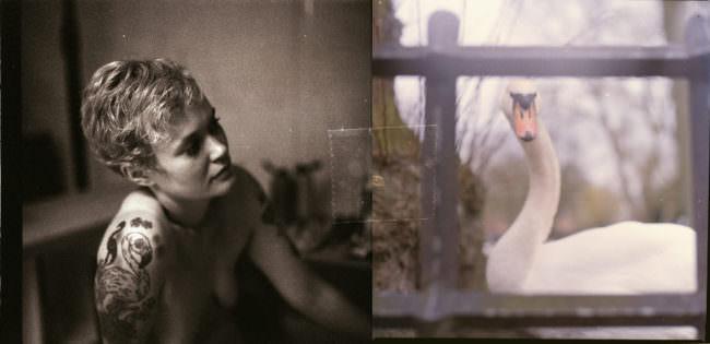 Ein Schwarzweißfoto einer nackten Frau mit Vogeltattoo ist mit einem Schwanenfoto mit Tesafilm zusammengeklebt.