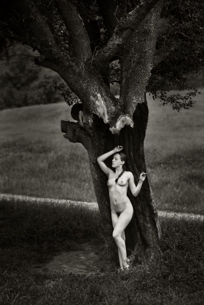Eine nackte Frau im Baum