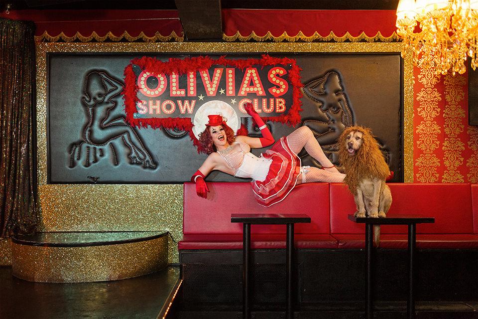 Ein Hund mit einer Löwenmähne sitzt begleitet von einer Burlesque-Tänzerin an einer Theke
