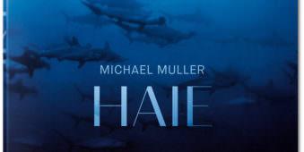 Ausschnitt eines Blau in Blau gehaltenen Buchcovers mit Haien