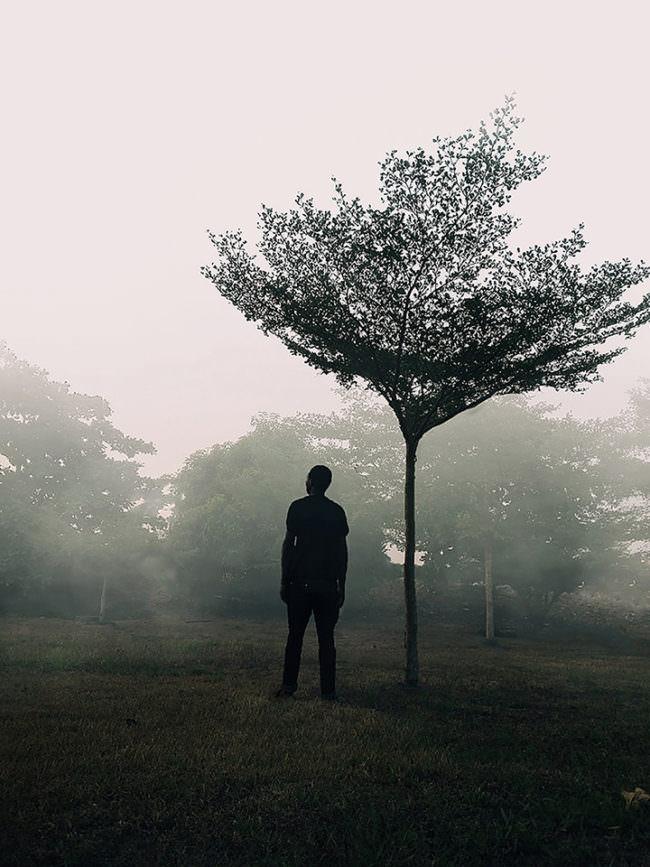 Eine Person steht unter einem Baum.