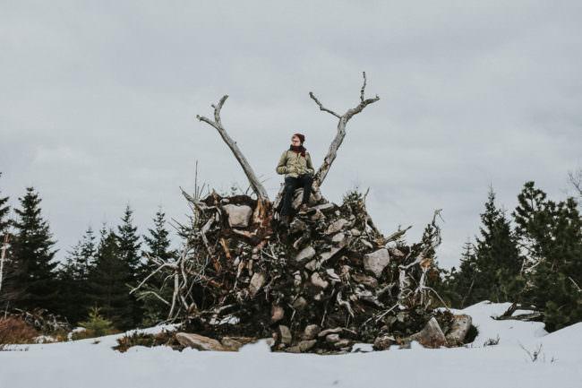 Ein Mann sitzt auf den herausgerissenen Wurzeln eines umgestürtzen Baumes.