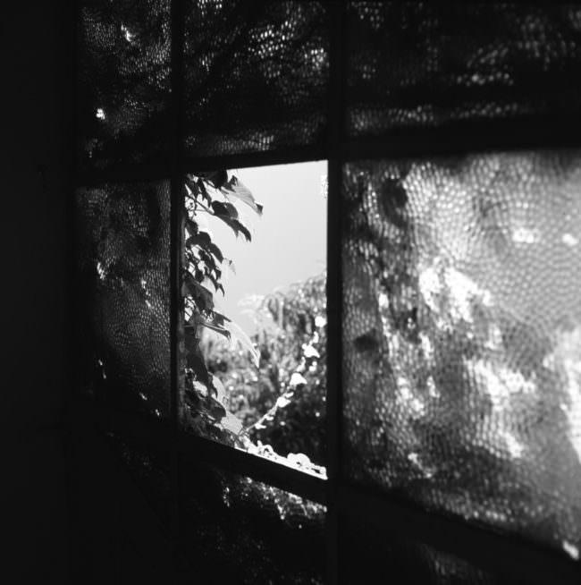 Aussicht aus einem Fenster.