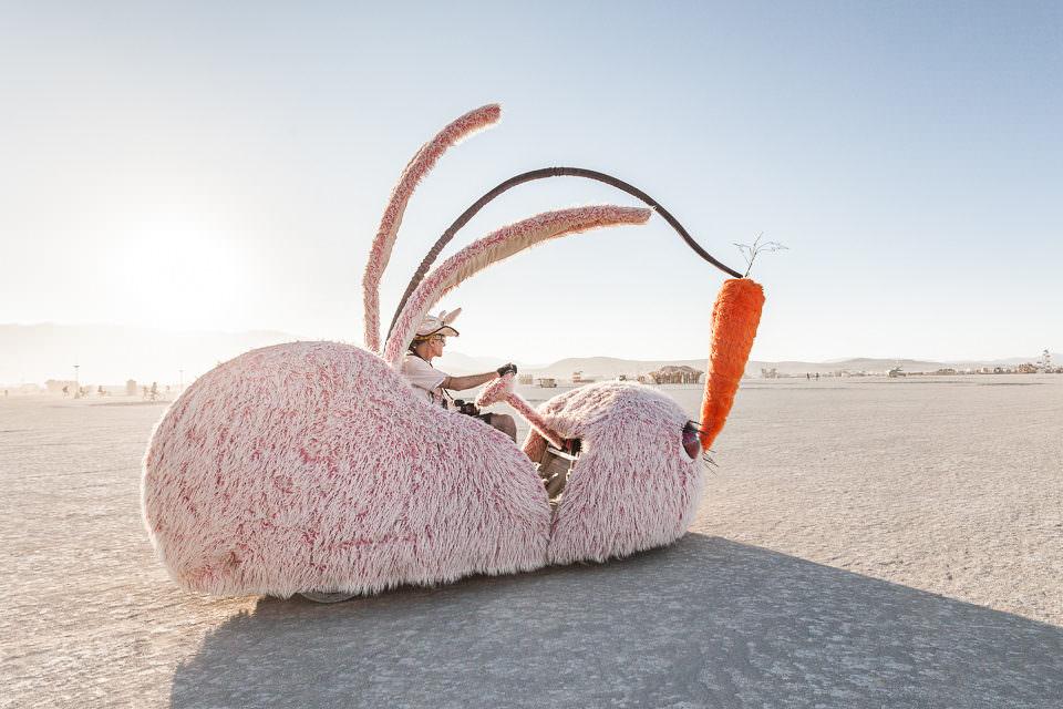 Ein riesengroßes Kaninchen in der Wüste.