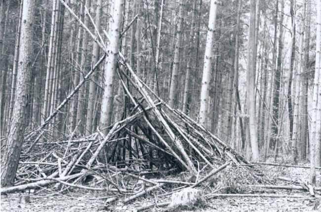 Eine Hütte aus Zweigen