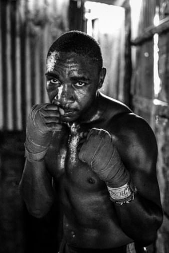Portrait eines Boxers