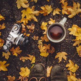Tee und Kamera in bunten Blättern