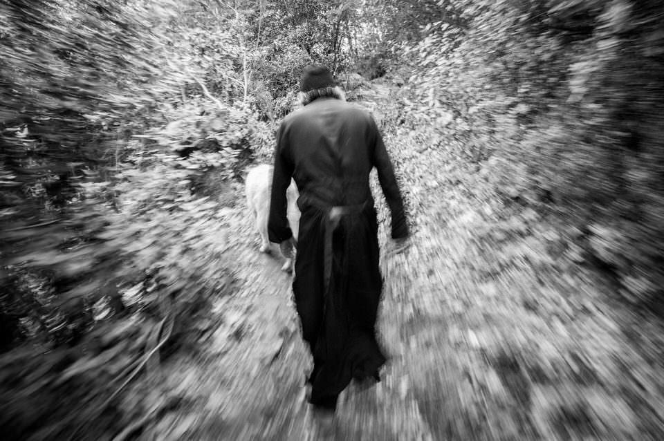 Ein Mann läuft in den Wald