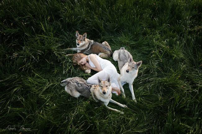 Frau schläft bewacht von drei Hunden auf einer Wiese