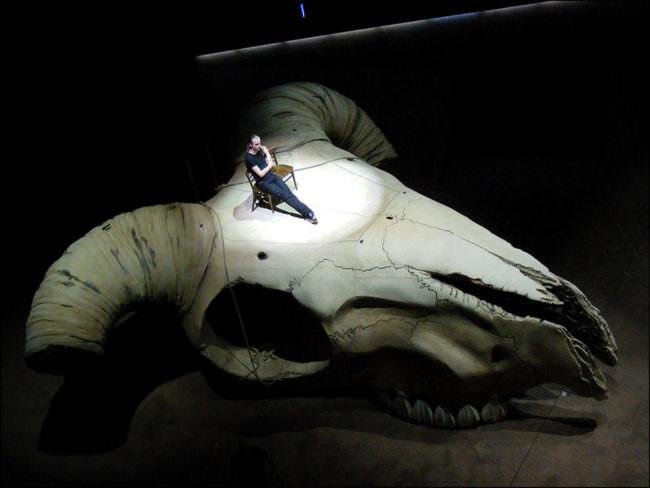 Mann sitzt in Lichtkegel auf übergroßem Tierschädel.