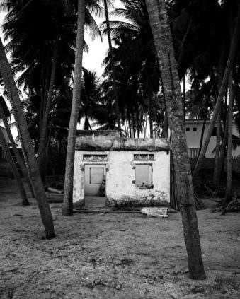 Haus zwischen Palmen
